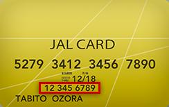 カード 明細 jal